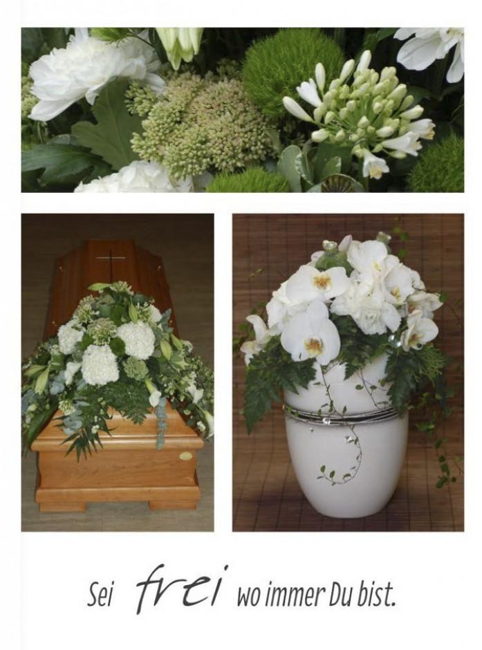 Blumenbuch PDF_Seite_28_1