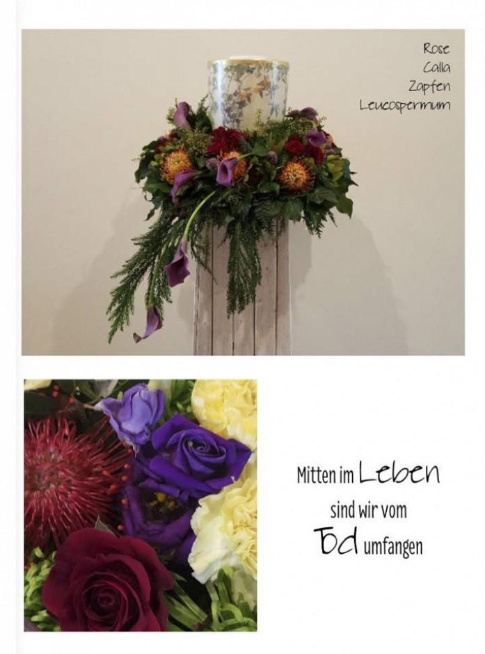 Blumenbuch PDF_Seite_38_1