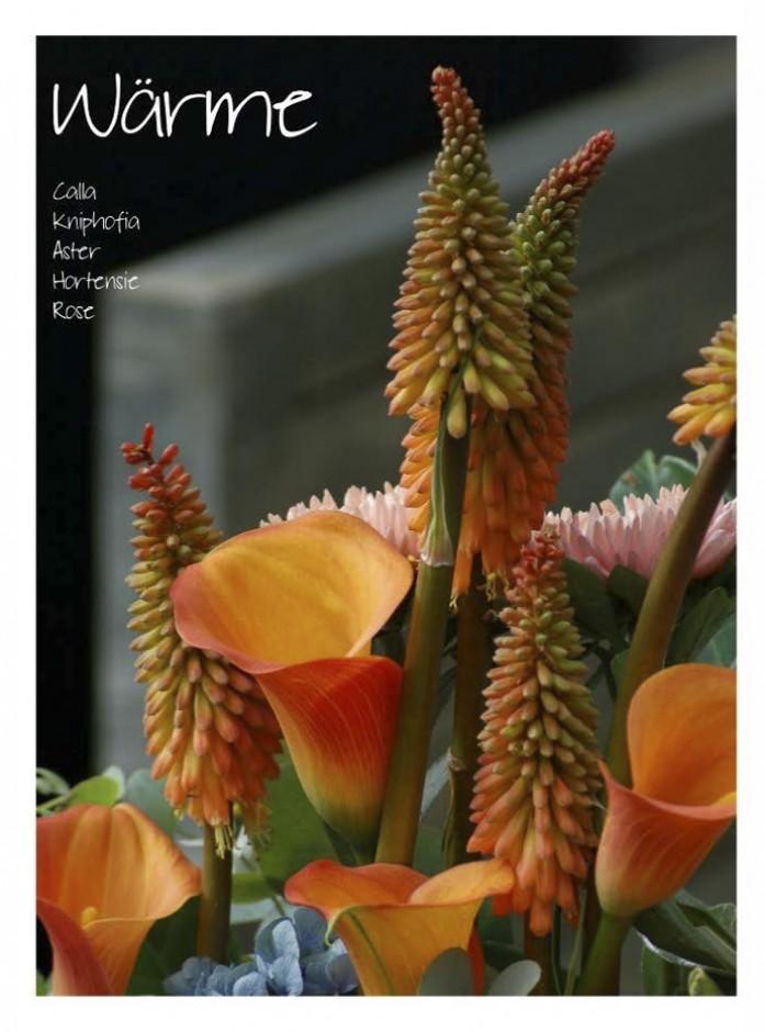 Blumenbuch PDF_Seite_17_1